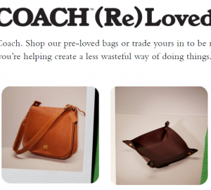 Coach Re(Loved)